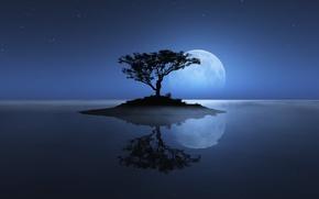 Обои море, небо, луна, дерево, остров