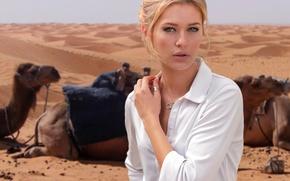 Картинка взгляд, девушка, пустыня, портрет, верблюды