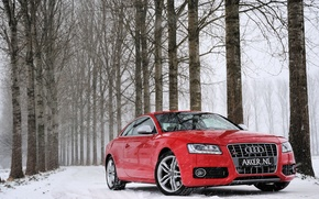 Картинка зима, лес, снег, деревья, красный, Audi, Ауди, red