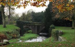 Картинка осень, мост, природа, листва, bridge, Autumn, leaves, fall