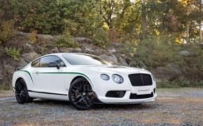 Картинка Bentley, Continental, GT3