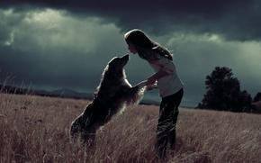 Картинка поле, радость, собака, девочка