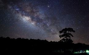 Обои широкоэкранные, HD wallpapers, обои, дерево, вечер, trees, ночь, полноэкранные, night, background, звезды, fullscreen, stars, широкоформатные, ...