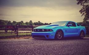 Картинка Mustang, Ford, Дорога, Лошадь, Форд, Muscle, Мустанг, Car, Blue, 5.0, Road, Кар, Horse, Масл