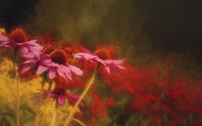 Картинка цветы, природа, текстура