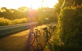 Картинка дорога, машина, листья, солнце, деревья, велосипед, город, фон, дерево, widescreen, обои, улица, настроения, wallpaper, листочки, …