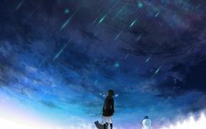 Картинка зима, небо, звезды, снег, собака, арт, девочка, снеговик, метеоритный дождь, tokiti