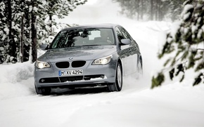 Обои Лес, Деревья, BMW, Зима