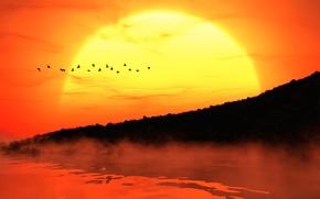 Картинка солнце, закат, птицы, туман, берег, силуэты