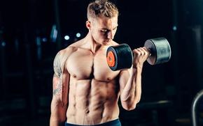 Обои man, muscles, tattoo, fitness, gym, barbell