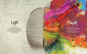 Картинка креатив, краски, мозг