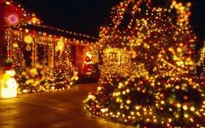 Картинка украшения, ночь, елка, новый год, гирлянда