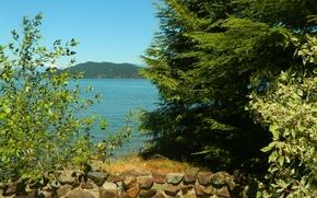 Картинка лето, деревья, горы, озеро, камни, summer, Пейзаж, trees, landscape, nature, mountain, lake
