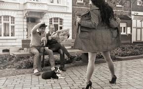 Картинка девушка, скамья, мужчины, показ, пёс, сюрприз, days like this