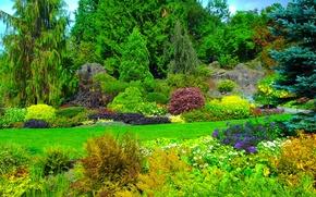Обои зелень, трава, деревья, цветы, Канада, солнечно, кусты, сады, Queen Elizabeth Garden