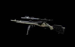 Картинка оружие, фон, оптика, винтовка, M1A, сошка, полуавтоматическая, тепловизор CNVD