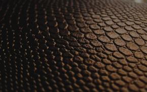 Картинка макро, черный, текстура, кожа, переход, коричневый, шороладный