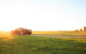 Обои автомобиль, grass, Jaguar, V8 S, car, Convertible, ягуар, трава, F-type