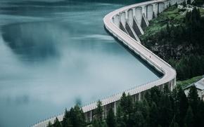 Обои лес, вода, озеро, дамба, водохранилище