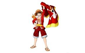 Картинка skull, game, One Piece, pirate, hat, smile, anime, man, boy, flag, captain, hero, asian, manga, …