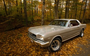 Картинка дорога, осень, 1966 Ford Mustang