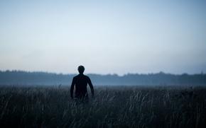 Картинка mist, back, field, fog, grass, morning, dawn, man