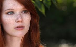 Картинка глаза, взгляд, милая, веснушки, рыжая, рыжие волосы, няша, Mia Sollis