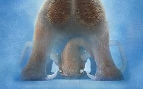 Картинка Ice Age, Crash, Blue Sky, Beautiful, Tiger, Buck, Animation, Seann William Scott, 20th Century Fox, …