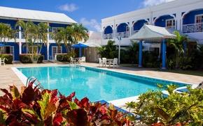 Картинка пальмы, бассейн, отель, курорт