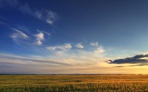 Картинка небо, облака, Поле, 158