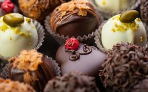 Картинка белый, ягоды, темный, шоколад, конфеты, сладости, орехи, десерт, смородина, фисташки, молочный