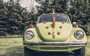 Обои ретро, олдскул, автомобиль, жук, машина, volkswagen beetle, зеленый дракон, oldschool