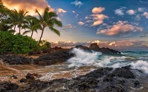 Картинка облака, камни, пальмы, океан, скалы, прибой, гавайи, hawaii, тихий, мауи, тропики., maui