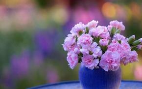 Картинка букет, ваза, гвоздики