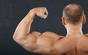 Картинка muscles, men, arms