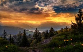 Картинка небо, трава, облака, деревья, закат, цветы, горы, обработка, Швейцария, долина, зарево, домики