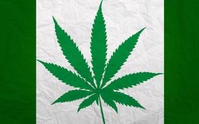 Картинка Марихуана, greenpeace, Конопля