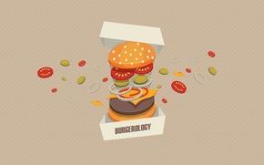 Картинка фон, коробка, мясо, овощи, бургер, Burgerology