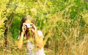Картинка поле, листья, девушка, деревья, природа, фон, дерево, widescreen, обои, настроения, растение, размытие, камера, фотоаппарат, wallpaper, …