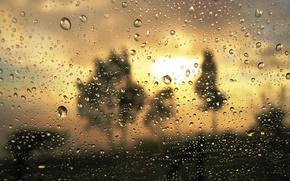 Обои стекло, золото, мутность, близость, дождь, капли