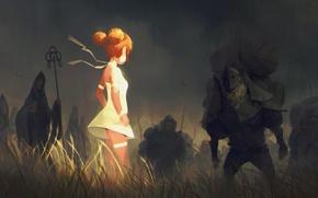 Обои птицы, девушка, поле, арт, deadslug, воины, аниме