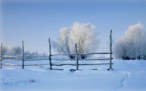 Картинка зима, поле, снег, забор, утро