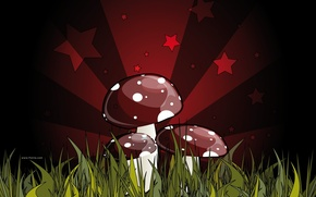 Обои красный, зеленый, рисунок, смертельный, грибы, поганка. ядовитый, гриб, темный