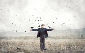 Картинка поле, птицы, человек