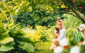 Картинка собака, девочка, настроение, природа, котёнок, друзья