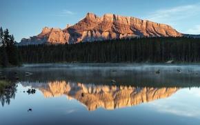 Обои canada, alberta, anthracite, johnson lake