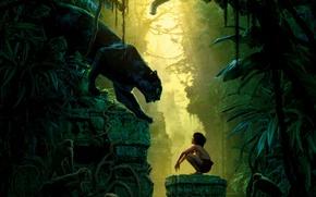 Картинка птицы, мальчик, пантера, джунгли, фэнтези, развалины, обезьяны, лианы, Багира, Маугли, The Jungle Book, Bagheera, Книга …