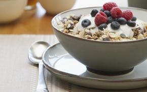 Обои еда, завтрак, черника, тарелка, ложка, сладкое, изюм, мюсли малина