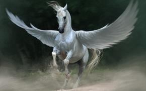 Картинка песок, белый, конь, крылья, пыль, фэнтези, арт, пегас, Lin Zhou