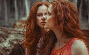 Картинка фон, девушки, лица, рыжие